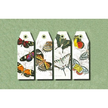 PEPIN Paper Craft Book Natural History
